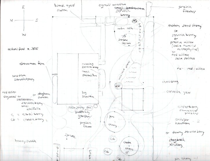 current blueprint for east side of yard