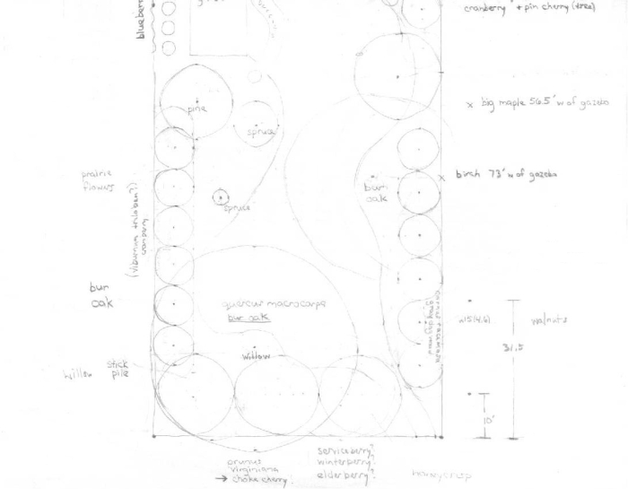 first blueprint for west side of yard